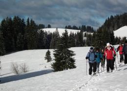 Schafberg Finsterwald Schneeschuh