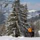 Skifahren Gfellen